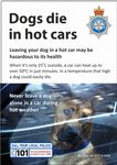 NYP16-0228 - Postcard: Dogs die in hot cars